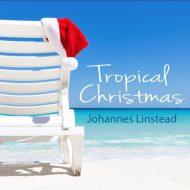 beach chair on sand with santa hat on chair